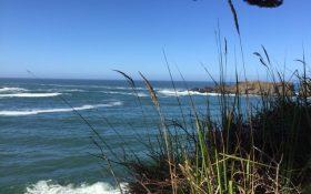 beach-coast-1